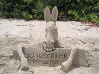 240_sand-donkey